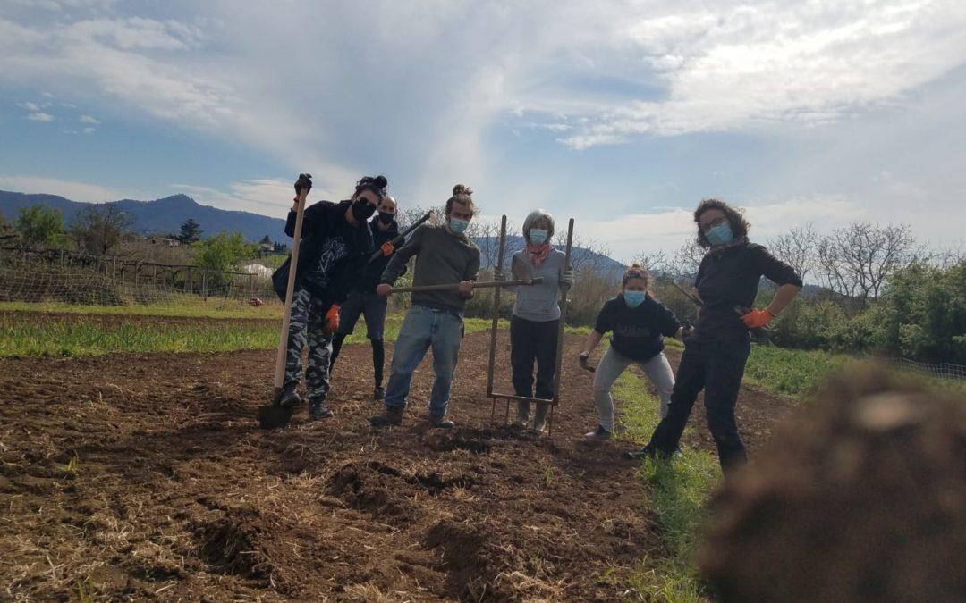 Costruiamo l'orto didattico! Primo step #zappachetipassa